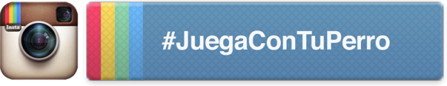 Banner de #JuegaConTuPerro