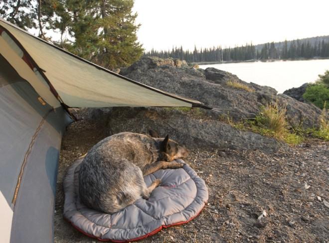 Cama para Perros Highlands Bed de Ruffwear