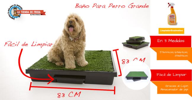 Pet Loo Baño para Perros en 3 Medidas y Super Fácil de Limpiar