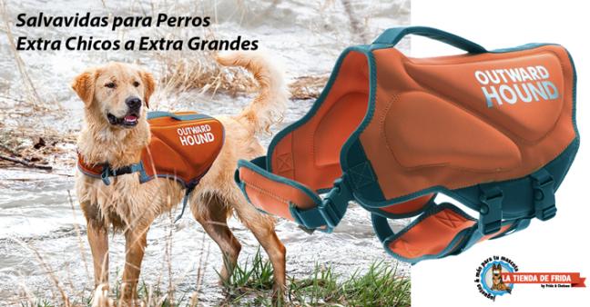 http://www.latiendadefrida.com/collections/salvavidas-para-perros
